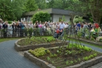 awosinnesgarten16-06-2013007