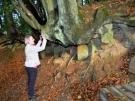 basaltkrater18-10-2013008