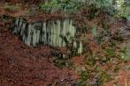 basaltkrater18-10-2013009