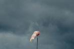 flugplatzfestduempel23-06-2013017