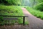 ruheforst14-06-2013020