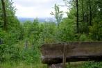 hambach-sophienhoehe28-06-2013023