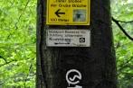 kindelsbergwanderung30-05-2013005