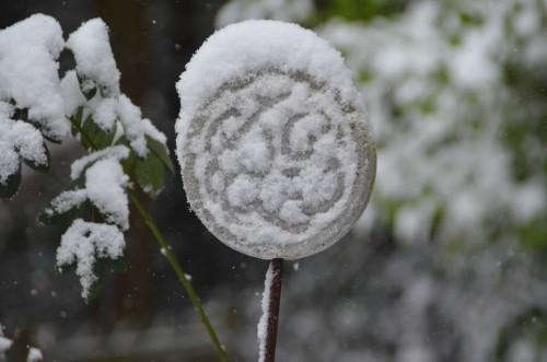 Schneefall im Garten