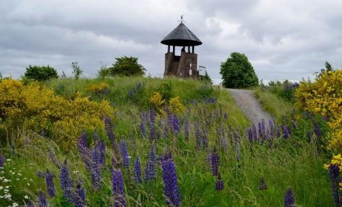 Römerturm auf der Sophienhöhe
