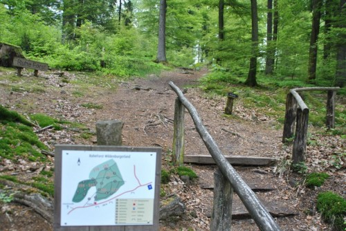 Eingang zum Ruhe Forst