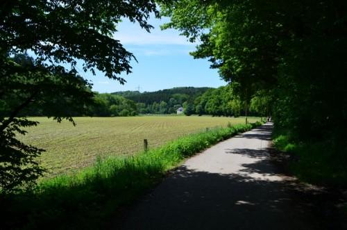 Altenberger Dom21.07.2013020
