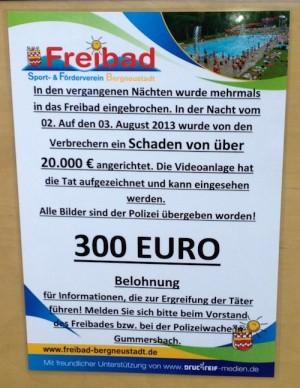 130806freibadbergneustadt