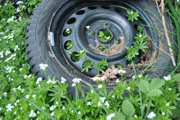 Photo of Kampf dem Wilden Müll – Müllsammelaktion im April