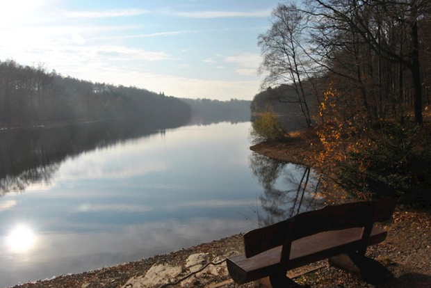 Photo of Neyetalsperre: 100.000 m³ Gülle-Wasser-Gemisch in Kläranlage Hückeswagen gereinigt