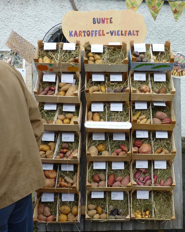 Photo of Nümbrechter Kartoffeltage und Erpelsfest