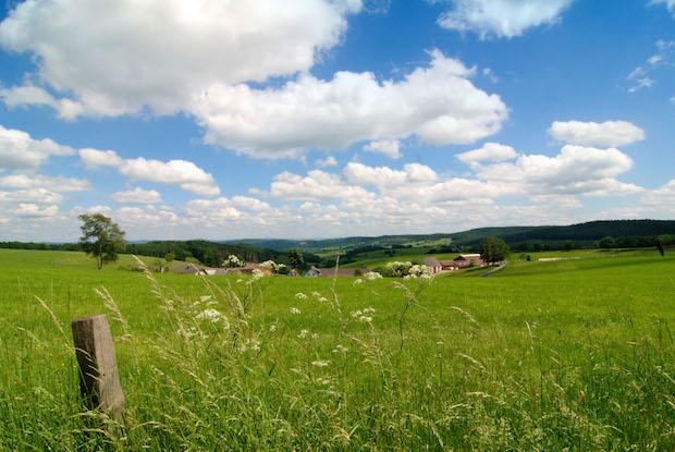 Photo of Der Berg ruft: Wälder, Wiesen, Weitblick im Ferienland Reichshof