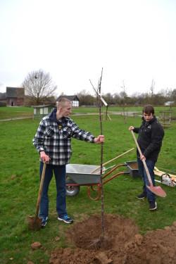 Mirco und Jean beim Einpflanzen des Baumes (Foto: Thomas Trappe, LVR).