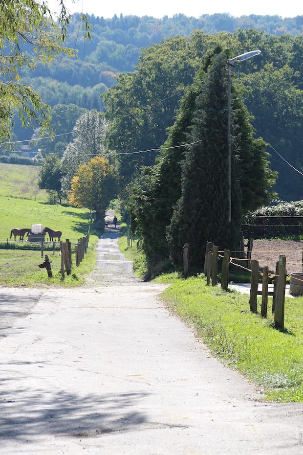 Photo of Geführte Wanderungen in Nümbrecht