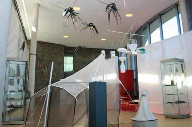Die neue Orangerie vermittelt einen Einblick in die Kulturgeschichte zum Thema Fliegen (Foto: OBK)