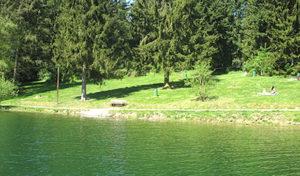 Online-Service zur Qualität der oberbergischen Badegewässer