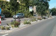 Heimat- und Verschönerungsverein Engelskirchen beklagt erneuten Diebstahl von Pflanzen