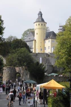 """Am Fuße von Schloss Homburg entsteht auch in diesem Jahr wieder eine """"(Natur)-Erlebnismeile"""" (Foto: OBK)"""