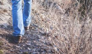 Bergische Wanderung mit Migranten – der Naturpark lädt ein