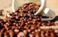 Kaffeegenuss und Kaffeetrends