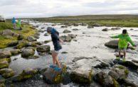 Walbeobachtung, Schneeraupenfahrt und Troll-Erlebnisse: Familienurlaub in Island