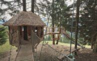 Spielerische Entdeckungsreise zwischen Waldboden und Baumwipfeln