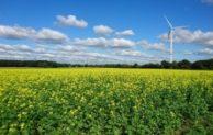 Fünf gute Gründe, grün zu investieren