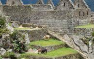 Südamerika- ein besonderer Kontinent für unvergessliche Reisen