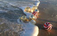 Auf Sylt Weihnachten feiern – warum in die Ferne schweifen