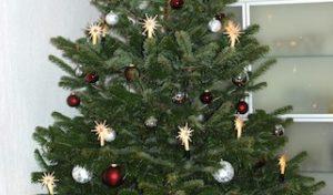 Weihnachtsbaum Sammelabholaktion des CVJM Oberwiehl