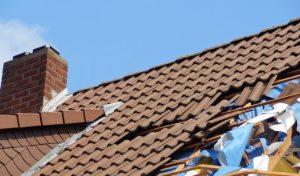 Sturmtief Friederike – nicht alle Schäden übernimmt die Versicherung