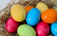 Beim THW- Gummersbach startet wieder das große Eiersuchen