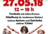 Sommerfest im Tierheim Koppelweide
