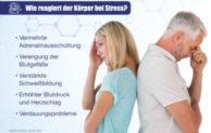 Stress als Ursache für Gesundheitsprobleme