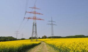Der Stromanbieterwechsel – Lohnt er sich wirklich?