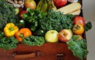 Gesund durch den Winter mit Obst und Gemüse