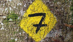Kostenfreie Schulungen für Wegemarkierer