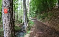 Die 6. Bergische Wanderwoche – Wanderungen in Oberberg