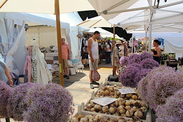 Pflanzen, Kräuter und Zwiebeln für den heimischen Garten gab es in Hülle und Fülle auf der Landpartie zum Kaufen