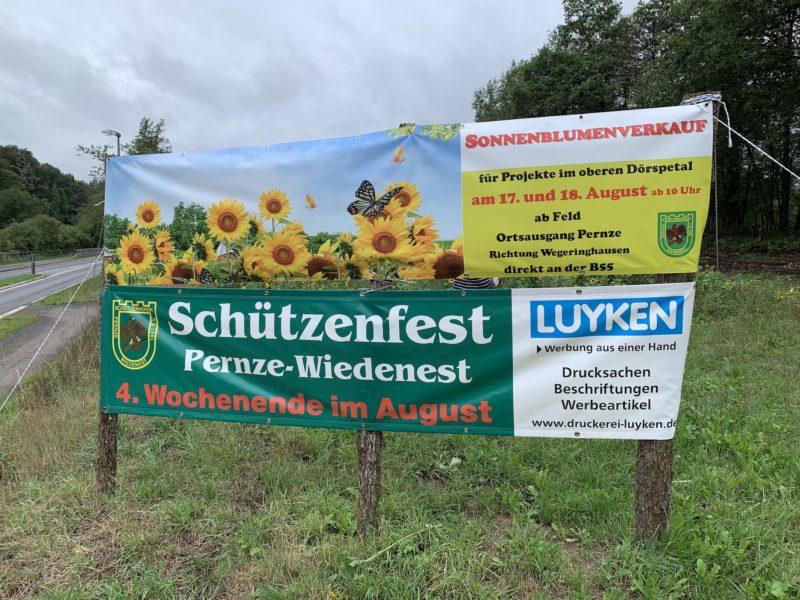 Photo of Bergneustadt – Warum pflanzt ein Schützenverein Sonnenblumen? (Video)