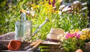 Gestaltung von Garten und Terrasse nach eigenem Wunsch