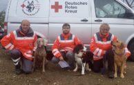 Rettungshunde absolvieren erfolgreich Eignungsprüfung