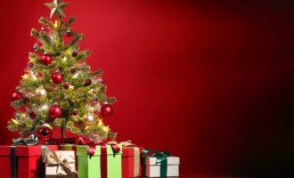 Natürliche Weihnachtsbäume – Mit gutem Gewissen feiern
