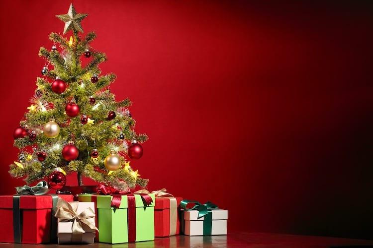 Photo of Natürliche Weihnachtsbäume – Mit gutem Gewissen feiern