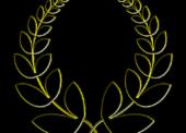 Ehrenamtspreis 2019 in der Hansestadt Wipperfürth