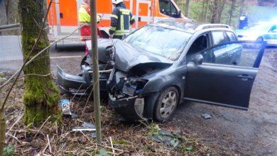 Photo of Frontal gegen einen Baum geprallt – Fahrer leicht verletzt