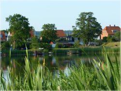Viele Urlauber zieht es zum Campen  in die schöne Natur von Dänemark