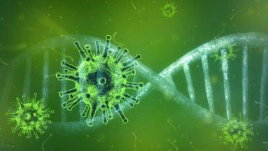 Photo of Coronavirus – Insgesamt 425 bestätigte Fälle