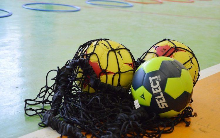 2020-03-02-Aue-Villgrattner-Puhle-VfL-Bundesliga-HBL-Valério-Nachwuchskoordinator-Meinhardt-Spielplan-VfL-Auswärtssieg-Elbflorenz-Handballschule