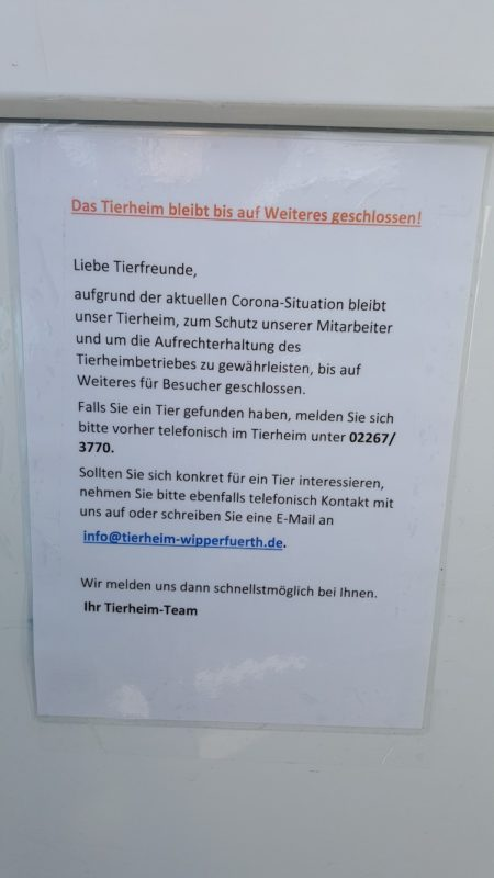 2020-03-19-Tierheim